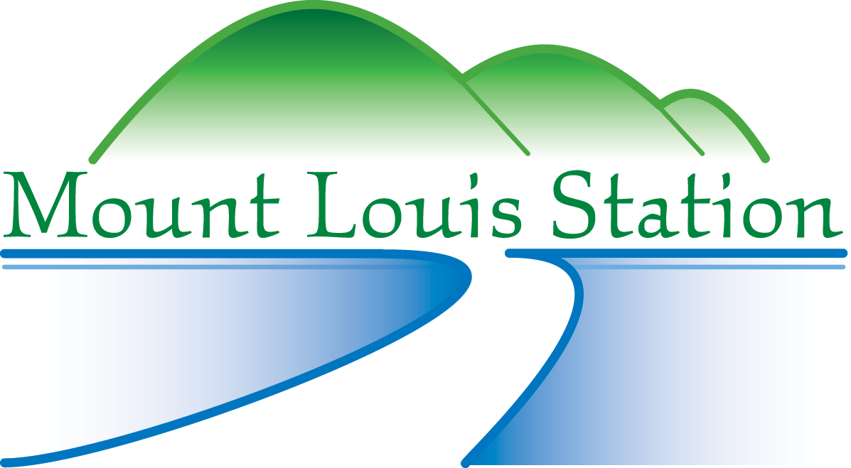 Mount Louis Station.png